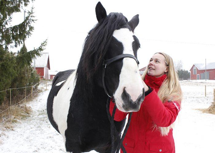 Henna Viikilä Viikilan hevostila