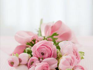 Kimppu vaaleanpunaisia ruusuja