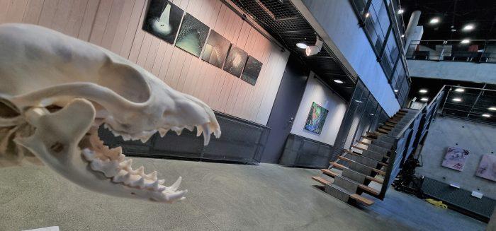 Taidekoulun kampuksen näyttely / Fine Arts Campus exhibition